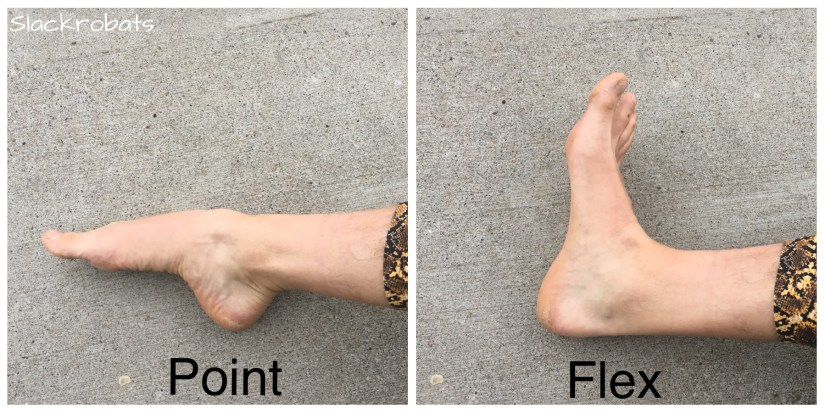 active feet in point and flex position
