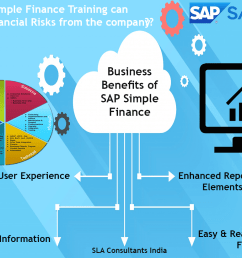 how sap simple finance training can reduce financial risks from the company  [ 1170 x 822 Pixel ]