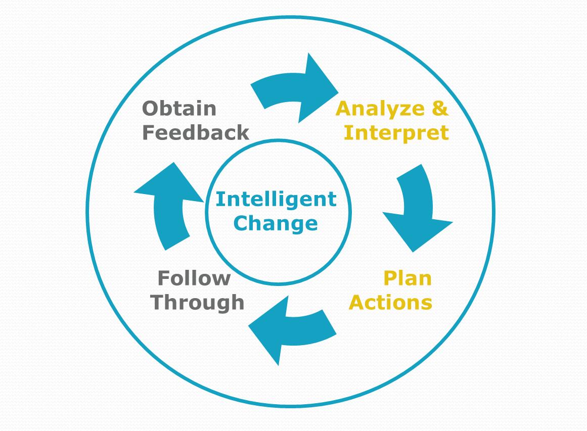 Gap Analysis & Action Planning