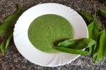 Krémová polievka z medvedieho cesnaku a zemiakov