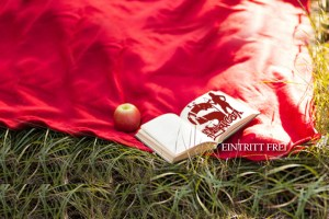 Literatur picnic