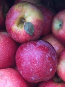 Vegan-Apples