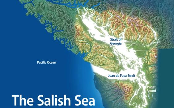 Starving Orcas - Salish Sea Map