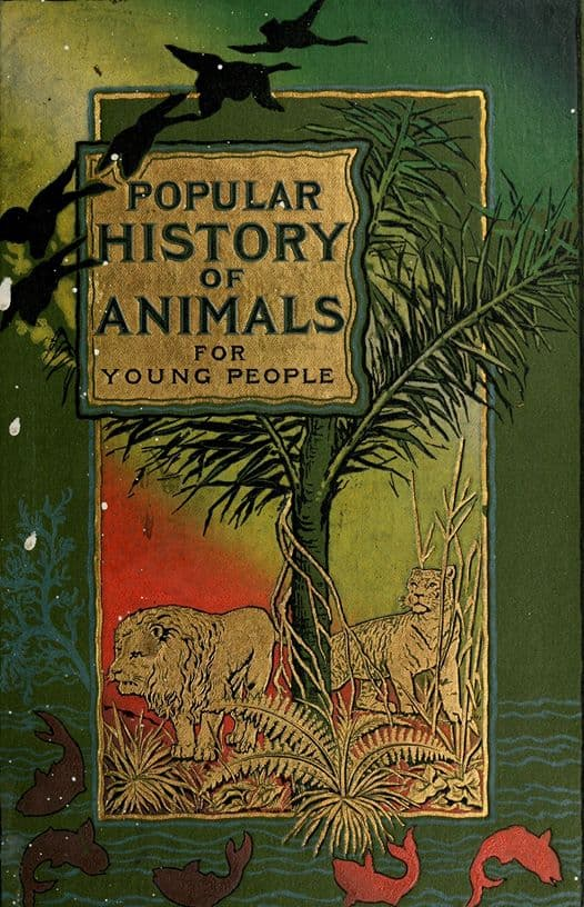 Popular history of animals for young people. 1895