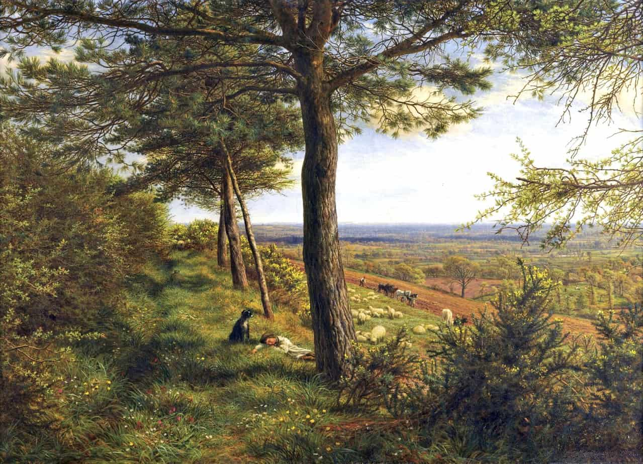 James Thomas Linnell - Firs and Furze