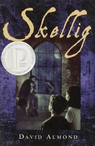 skellig-cover-image