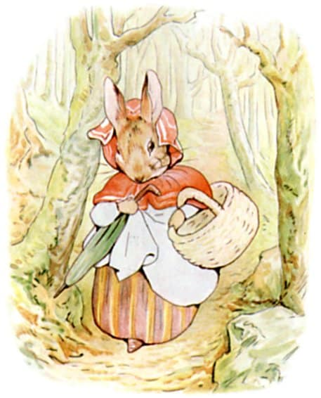 walking through the woods peter rabbit