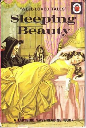 Sleeping Beauty Ladybird well loved tales
