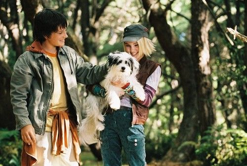 bridge-to-terabithia-dog