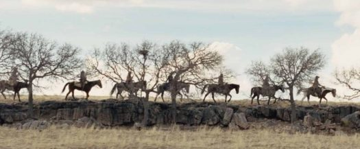 The Homesman line of horses