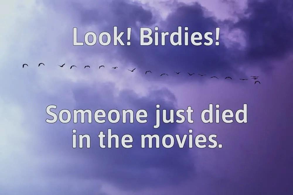 birds flying in the sky purple clouds