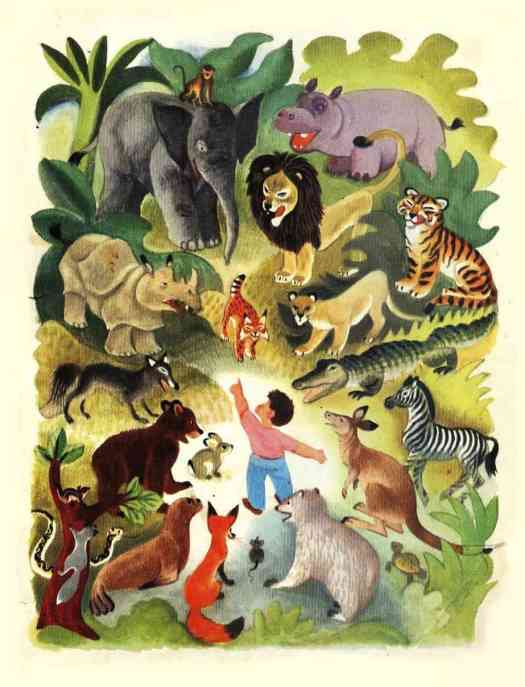 Jane Werner (1914-2005) and Cornelius De Witt (1925-1970) collaborated and produced this 1949 book called- Words How They Look and What They Tell animals in forest