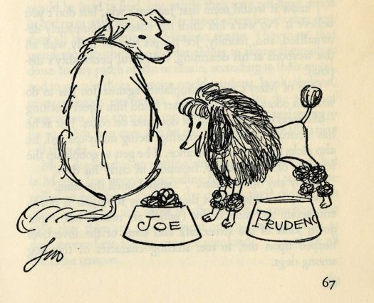 THE BOOK OF JOE by Vincent Price, with illustrations by Leo Hershfield, 1961 poodle