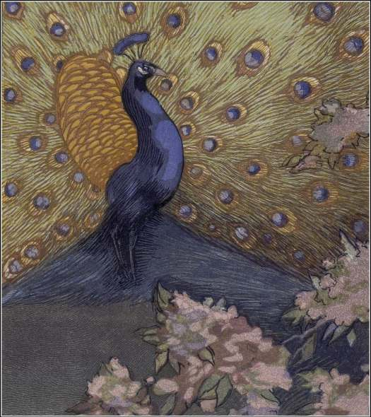 by the French artist Paul Jouve 1878 - 1973, for Le Livre de la Jungle (The Jungle Book), Rudyard Kipling, 1919 peacock