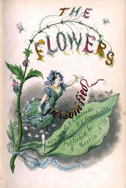 The Flowers Personified by French Caricaturist and illustrator (Jean Ignace Isidore Gérard), nom de plume J.J Grandville, 1847