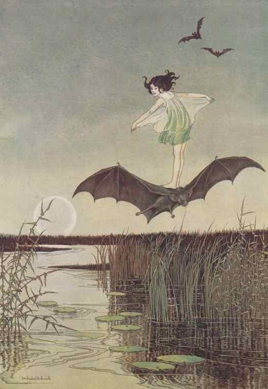 Ida Rentoul Outhwaite (1888 - 1960) 1925 illustration Witch's Sister On Her Black Bat for The Enchanted Forest written by her husband Grenbry Outhwaite