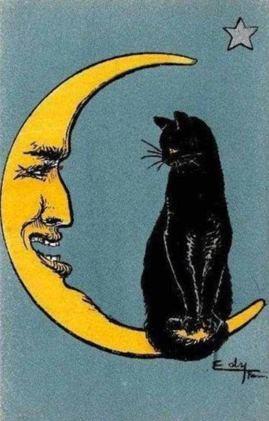 From a vintage French postcard, c.1917 cat moon