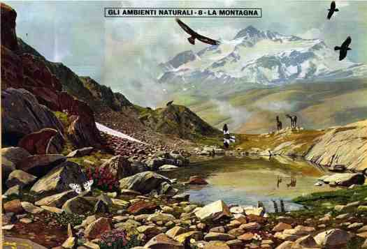 Natural Environment - The Mountain - Corriere dei Piccoli Centerfold by G.B. Bertelli, 1967