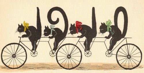 A vintage New Year's postcard for 1910, with four cats riding a three-wheeled bike and their tails spelling out 1910