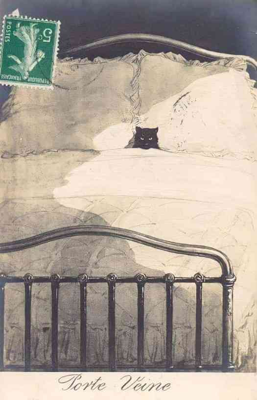 French postcard 1913 cat in bed