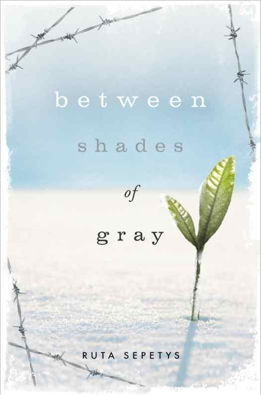 Between Shades of Grey book cover