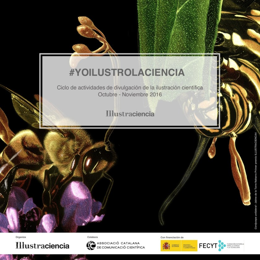 illustraciencia2016