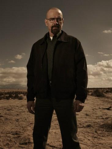 Breaking Bad Season 5 - Walt