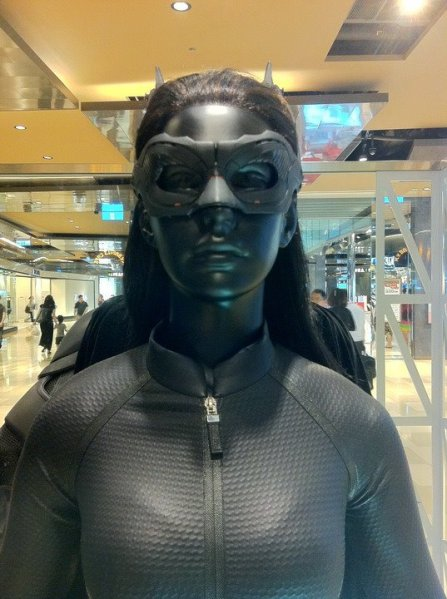 Catwoman Costume Close Up 1