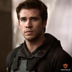 Hunger Games Mockingjay - Liam Hemsworth as Gale