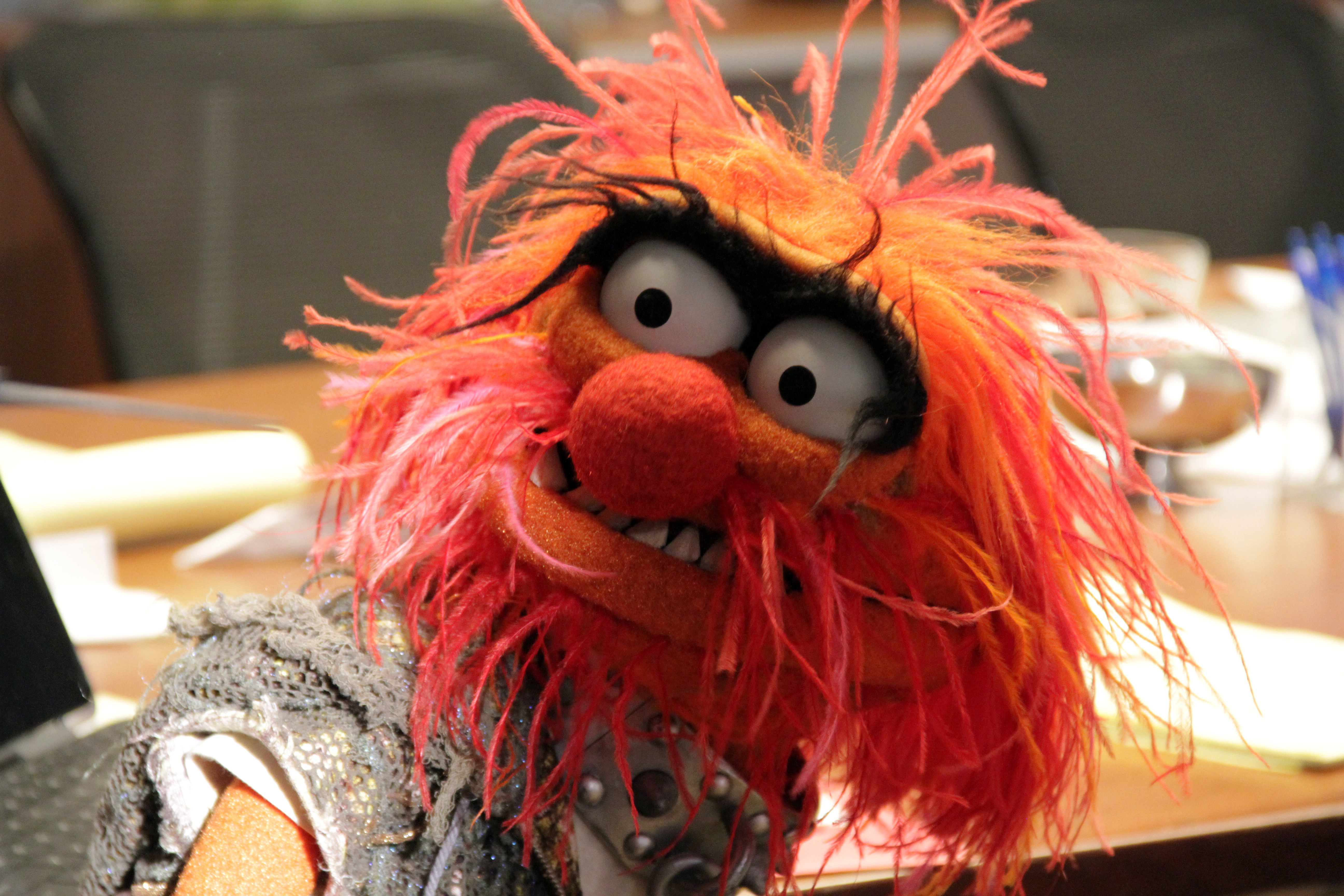12 new photos from the muppets tv show 2015 - Animal muppet images ...