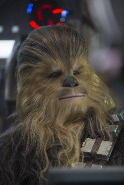 Star Wars The Force Awakens chewbacca
