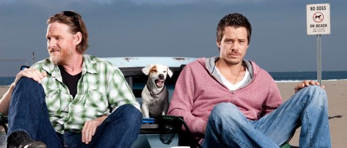 Terriers revival