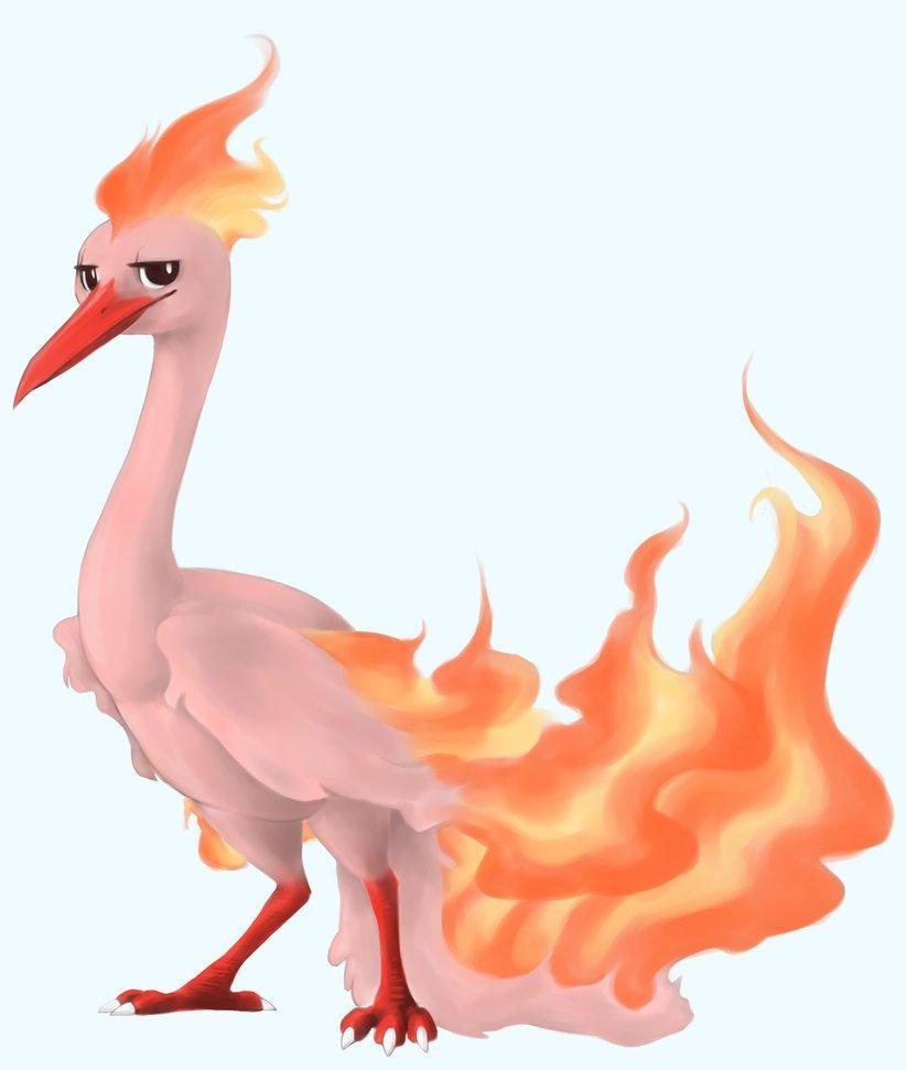 10 Pokemon GO Moltres raid details: How you will own the Fire Chicken - SlashGear