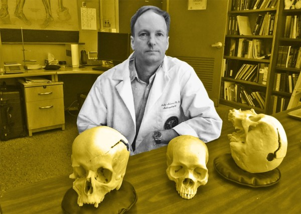 Forensic Anthropologist Work