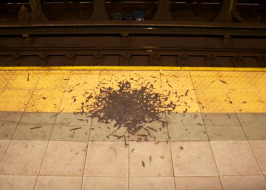 NYC subway gunk Whats That Thing