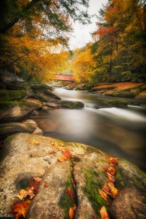 Fall 2015 at McConnell's Mills