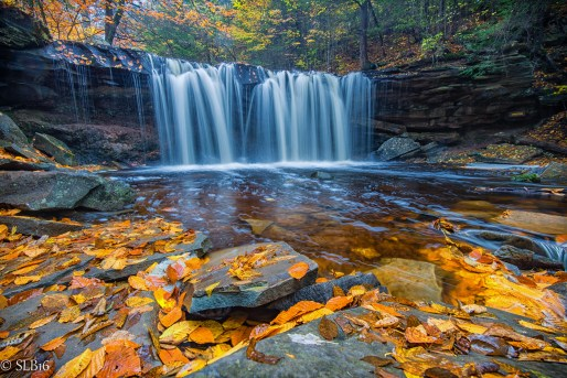 Ricketts Glen State Park Fall 2016, Waterfall, Fall