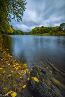 Clarion River shore line