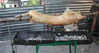 Cerdo asado al pincho, según la forma de elaboración tradicional de la región central de Cuba