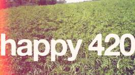 happy 420 Cannabis