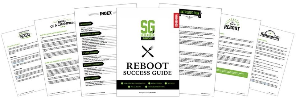 Sleekgeek REBOOT Success Guide Overview