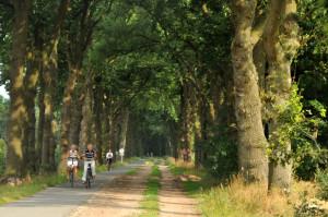 Fietspad  Hengstmeerweg wordt aangepakt