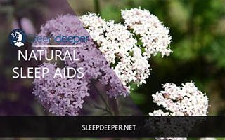 natural sleep aids review