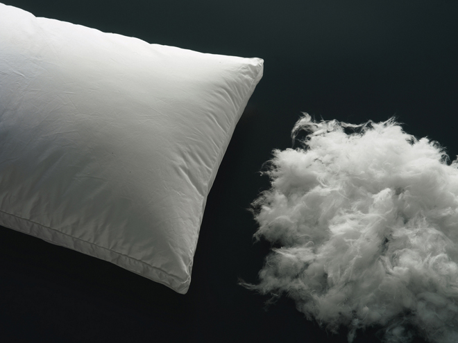 Best Pillows for Neck Pain  Sleep Scouts