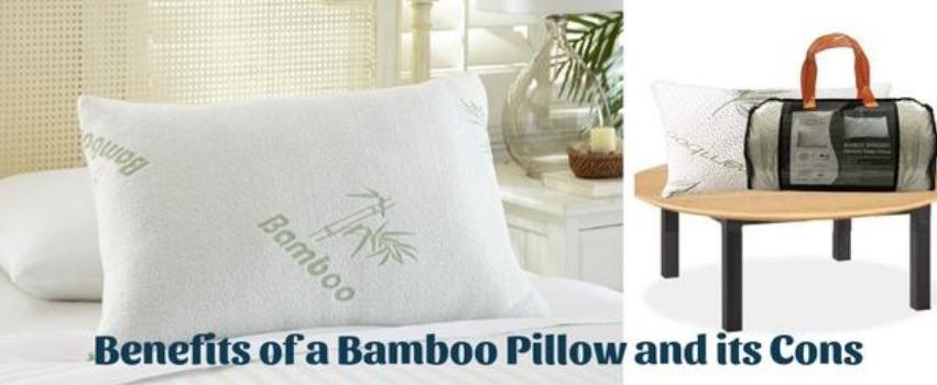sleepsia bamboo memory foam pillow