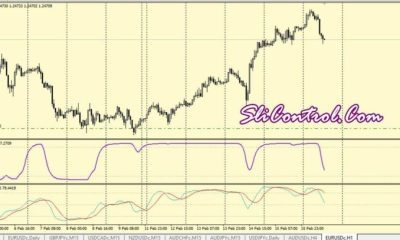 Schaff trend cycle trading system