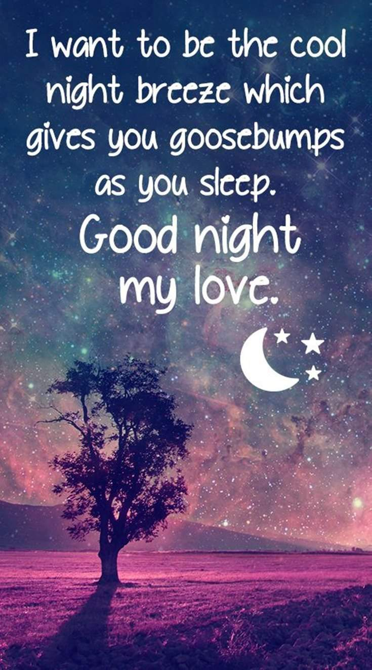 36 Good Night Quotes and Good Night Images 4