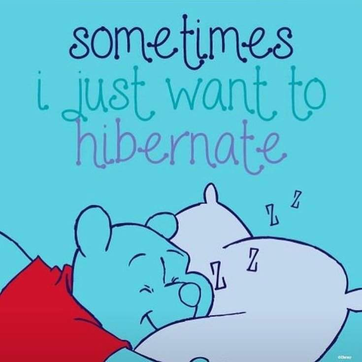 37 Winnie The Pooh Quotes for Every Facet of Life 13
