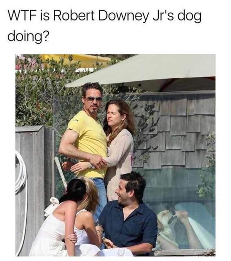38 Hilarious Memes Thatll Make You Lose It 20