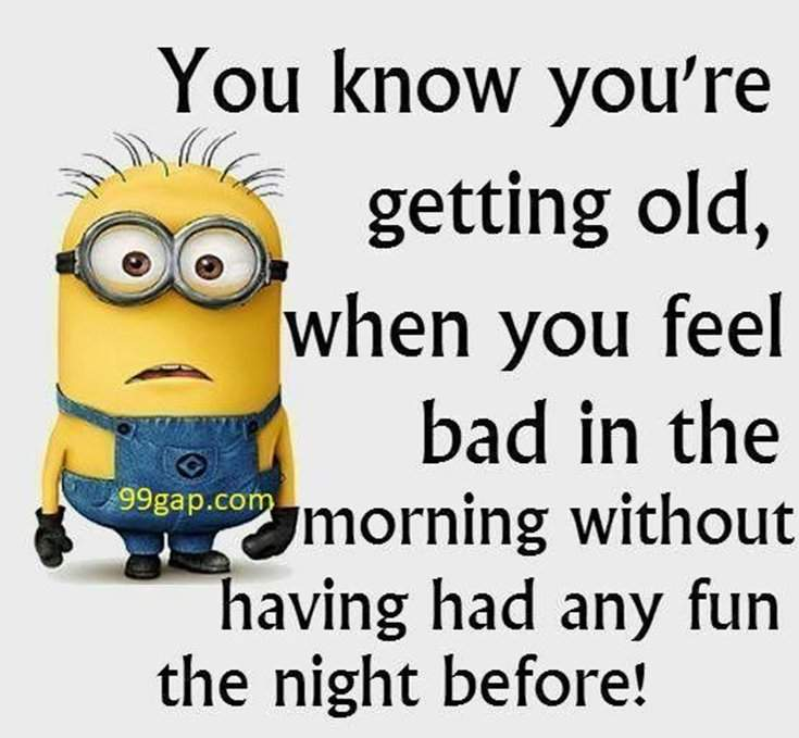 40 Funny despicable me Minions Quotes 24